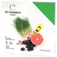 American Crafts 12x12 CARDSTOCK 60 Sheets 216gsm Summer