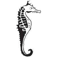 KaiserCraft Embossing Folder Sea Horse 10.6cm x 15cm FREE SHIPPING