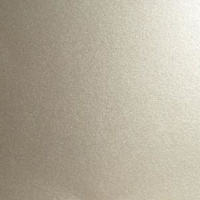 Sue Wilson Pearl Cardstock A4 220gsm Silver Shine 25 Sheets