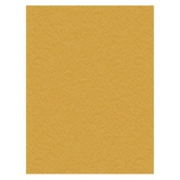 Crafts-Too Non Stick Craft Mat 33cm x 50cm (13in x 19.5in ) NOTHING STICKS!