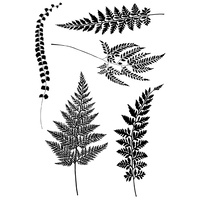 Woodware Clear Stamps Ferns