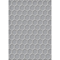 Spellbinders Embossing Folder 5x7 Chicken Wire SEL-009